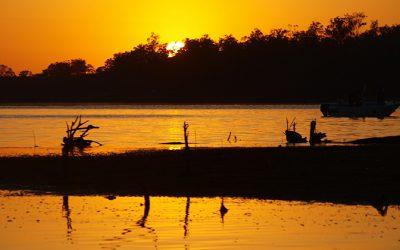 Lake Monduran September 2017 Fishing Report